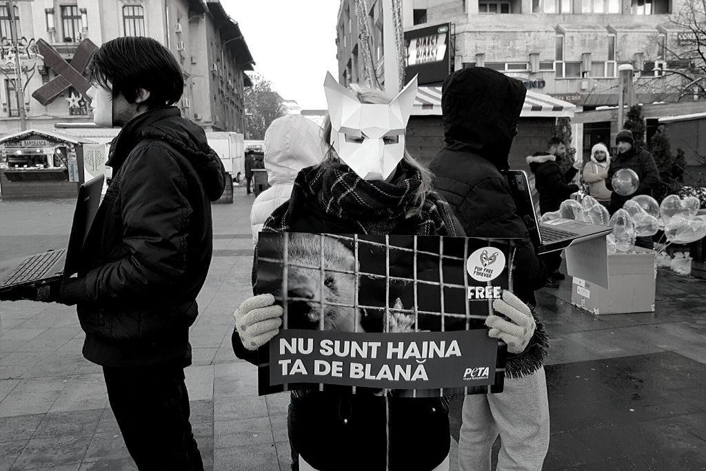 Acțiune anti-blană Tg. Jiu 2018 (F.R.E.E.)