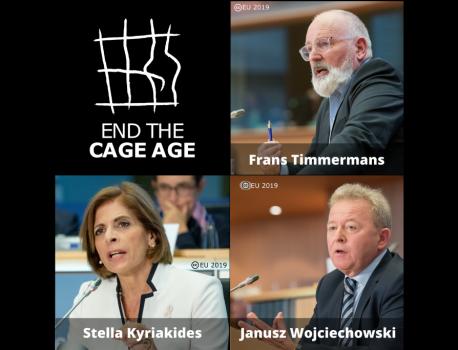 Peste 160 de ONG-uri cer liderilor UE să elimine cuștile din ferme