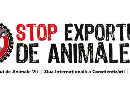 FAQ – Ziua Internațională pentru Interzicerea Exportului de Animale Vii