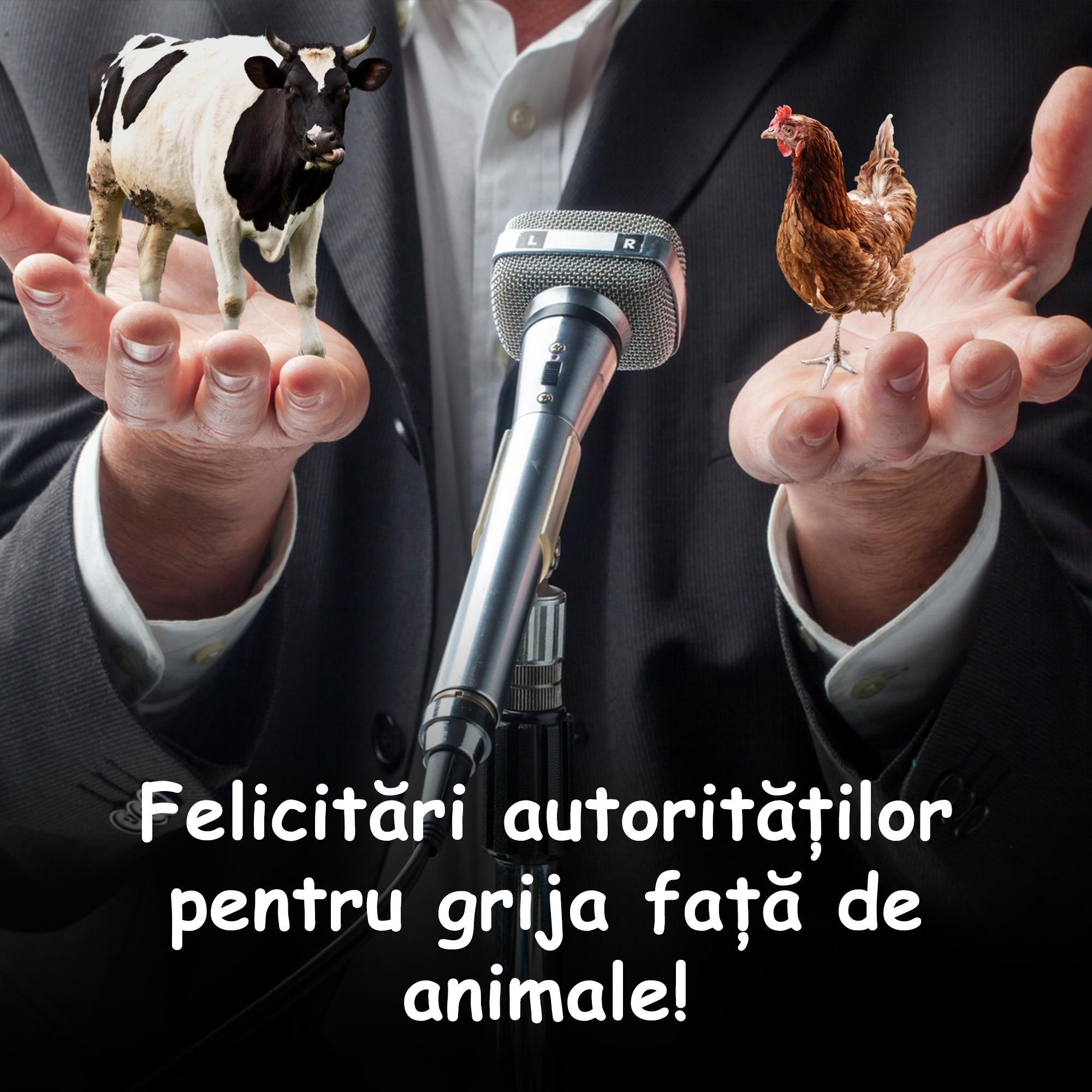 Felicitări Guvernului și Parlamentului României pentru măsurile privind protecția și drepturile animalelor!